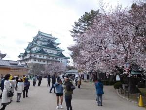 花見 名城公園